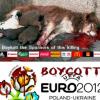 Euro 2012: lo sterminio dei cani in Ucraina