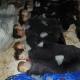 Intervento in Siria, armi chimiche: provocazione per trascinare USA nel conflitto
